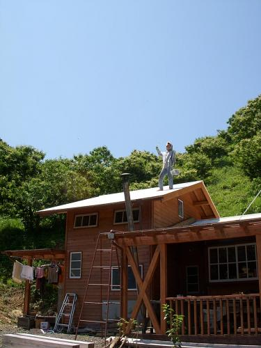 もう、そのまま屋根の上にいて、シャチホコ化してもいいんじゃなかろうかと思うほどに元気です