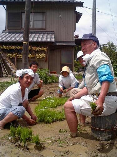 これが本日の主なメンバー。苗取りという作業中。これから育つ土地によく慣れて育つ様に、植える田んぼに直接、苗立てをした豪君。こだわりの田作りらしい。