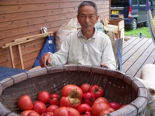 山根のおっちゃんと、作り手には似ず、はち切れんばかりに完熟したトマトたち