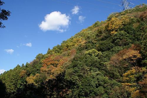 山全体の紅葉までもあと少し・・・。