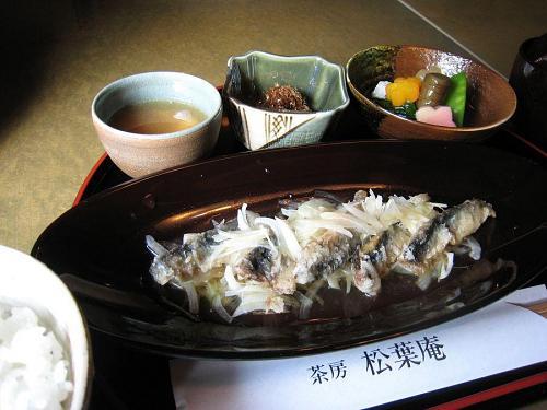 2009年2月9日(月)のメイン・・・イワシの衣揚げ(体に優しく、おいしい!)