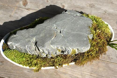 前の川で拾ってきた石も、ほらこの通り。