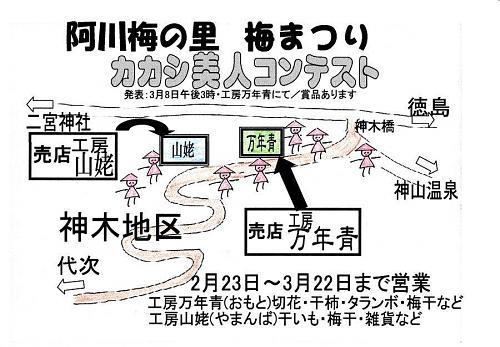 阿川小学校に駐車し、県道を徳島市方向に約800m下ったところにある神木(じんぎ)橋からスタート。梅林の中を潜り抜けながら代木地区を通り、小学校まで周遊できます。昔どこかで見たような、懐かしい風情が楽しめます。