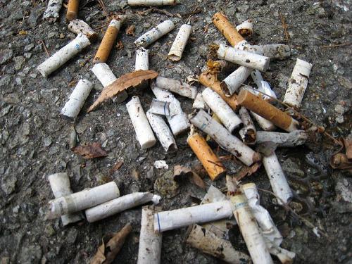 量はともかく、数で多いのはタバコの吸い殻。あちこちに拡散状態!中には車を止めて、灰皿をそのままぶちまけたものまで・・・。