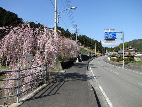 国道438号沿い(鬼籠野字西分) 2009年3月24日09:01撮影
