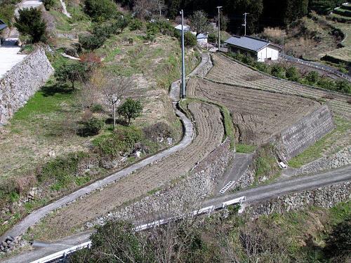 棚田再生の1号地。西森由一さんらの手によって、すでに耕されていました。後は畦波を立てだけ。