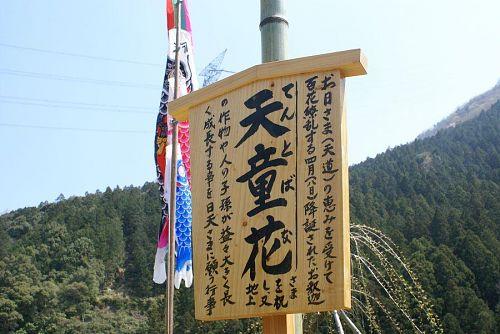 「てんと花」を漢字で書くと「天童花」と書くのですね。