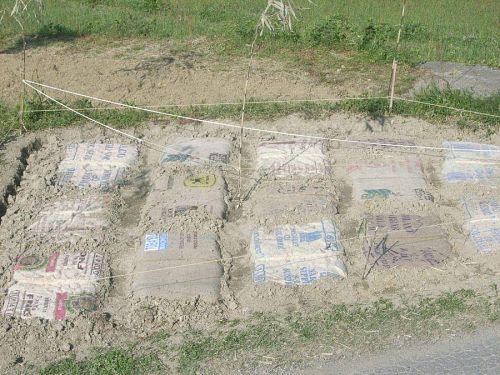 元山に作った苗床です。一般的には水を入れて作ります。