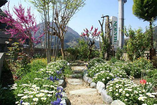 この時期春の花壇の花も終わり次の季節の苗を植えつける。