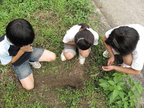 途中でモグラが死んでいたので土に埋めてみたり