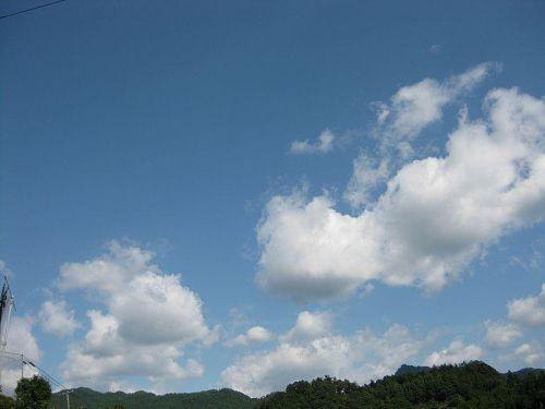 良い雲です。