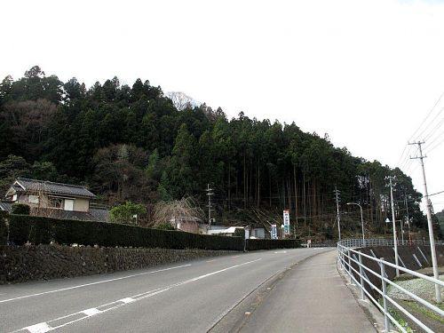 道の駅付近の里まで降りてきた森づくり。写真左奥方向へ、整備を進めていきます。(撮影:2010年1月1日10:06@神領字西上角)