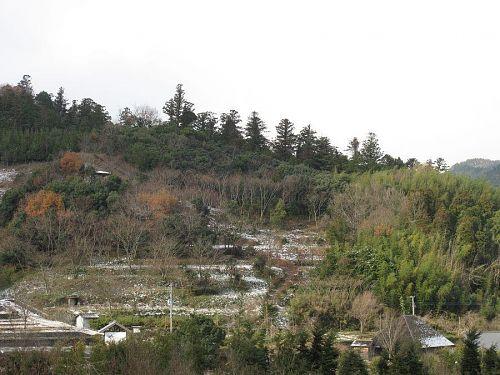 創造の森中腹に、コナラやトチを植樹。昆虫の森を作ります。(撮影:2010年1月1日10:02@神領字南上角)