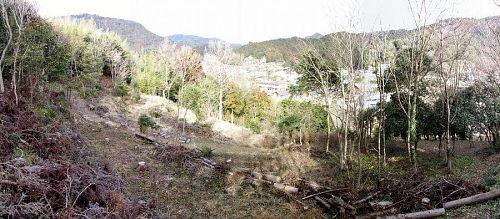 神山温泉対岸、ふれあい公園の上の斜面が植樹予定地です。