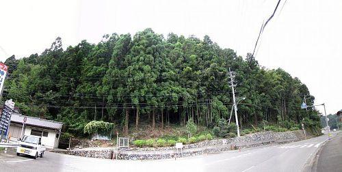 「森づくり」が入る前の写真(2009年8月23日)。