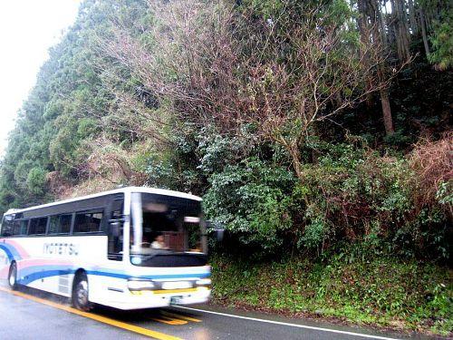 夏場、四千万円近くする大型バスを傷つけないように、センターラインを大きくはみ出して通過していたらしい・・・。