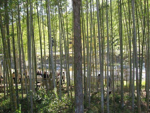下分の竹林のアート