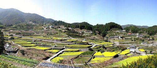 日本の田舎を感じさせる江田集落。菜の花や水田の時期は格別に美しい。(2010年3月20日09:50)