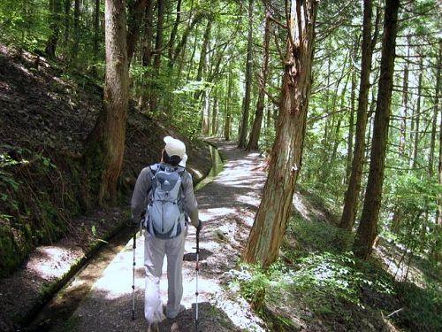 梼原 松原森林セラピー久保谷ロード