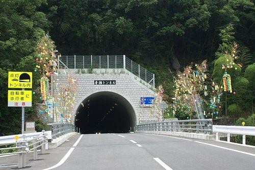 養瀬のトンネルを過ぎると本数が急に増えます。