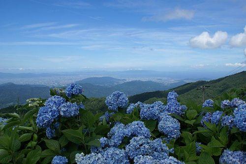 山頂からの見晴らしも最高です。