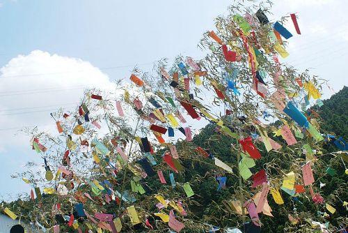 井ノ谷のカカシたちを飾る短冊さがり。