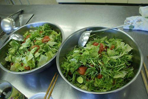家庭菜園で作っているサラダ水菜などを使ってのサラダ。