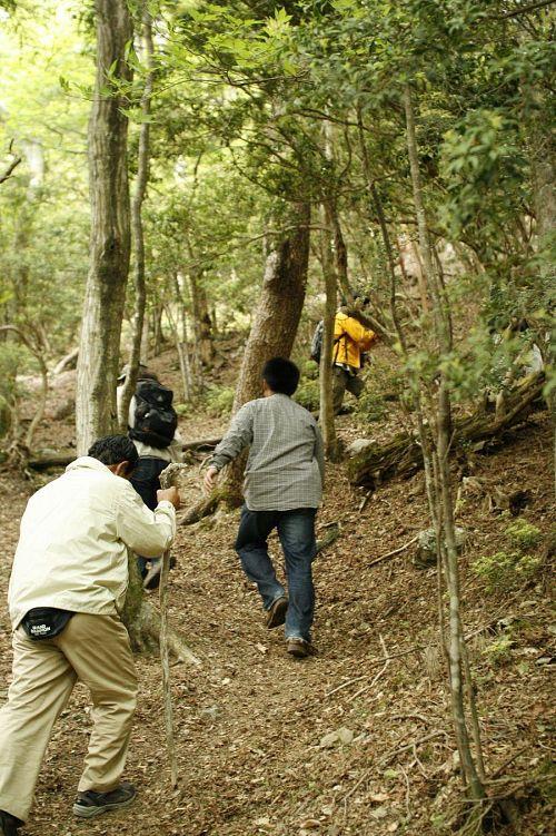 言い出しっぺの岩丸父さん。ひさしぶりの登山に杖は欠かせません。