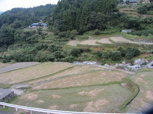 神山 棚田