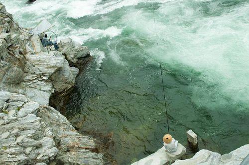 鮎戸瀬荘から見る「瀬」。鮎釣り中。水の色が白濁するくらい急な流れです。鮎戸瀬荘では天然鮎のランチも食べれますよ〜♪※要予約