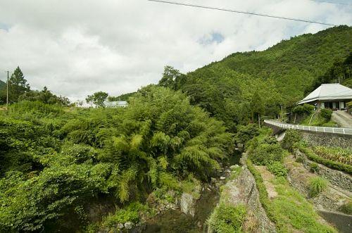 国道438から県道43に曲り橋を渡って焼山寺向かう道の最初の橋を左に曲り、上ル。