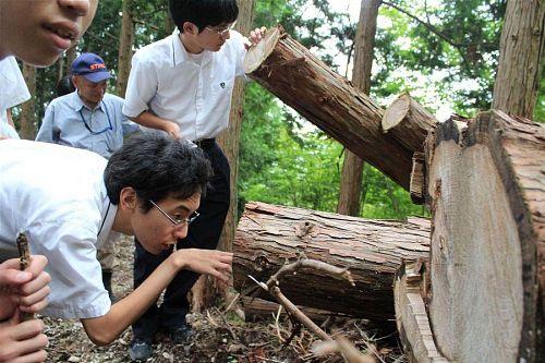 第3期生がはじめた「神山森聞き」。「森の名人」と呼ばれる先人達と若人達とが出会い、これからを考える。そんな場を創出しています。写真は第3期生橋本さんの記事より拝借いたしました。またまた勝手に使ってすいません&ありがとうございます。