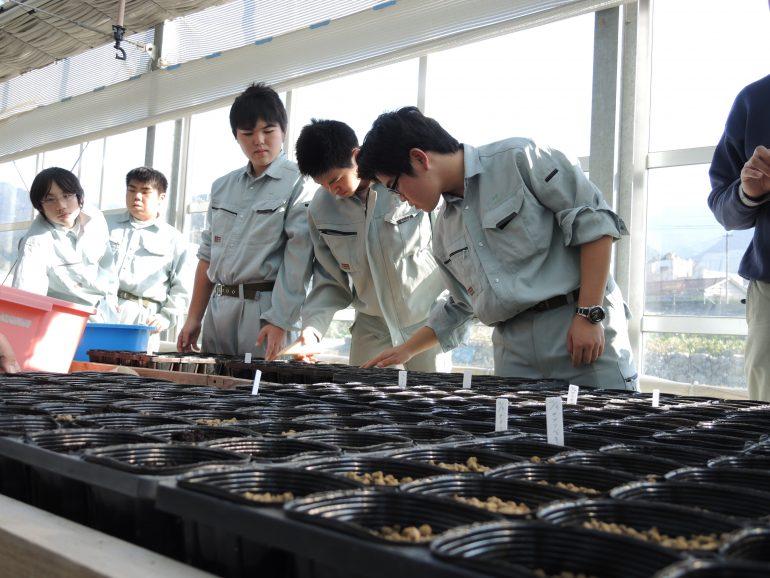 先生・生徒・地域の人たちとつくる農業高校、臨時補助員募集