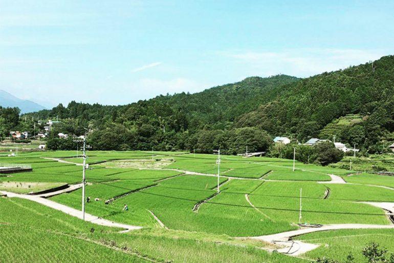 「つなぐ農園」と「里山の会」