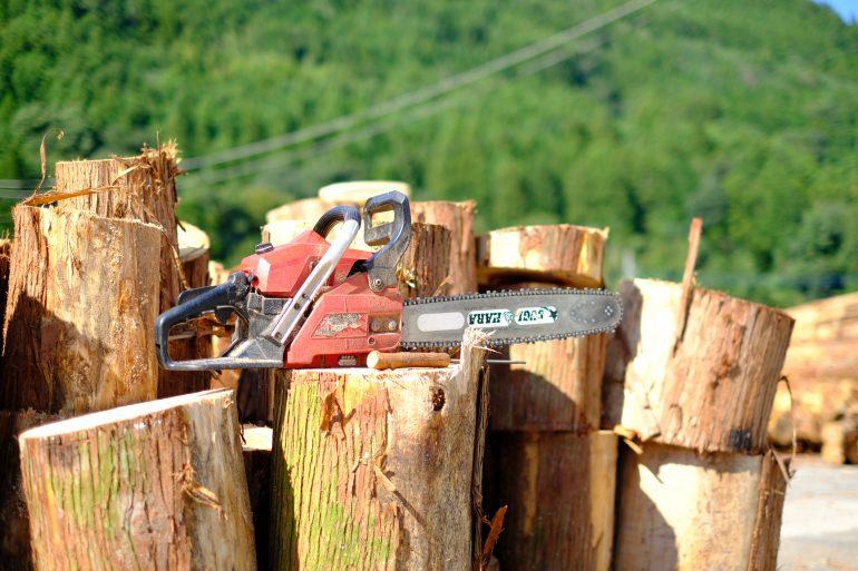 神山の林業の担い手を募集|徳島中央森林組合で働く