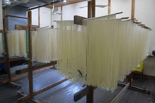 Udon noodles drying