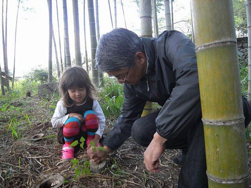Mr. Ominami explained to Sofie all about how bamboo works.