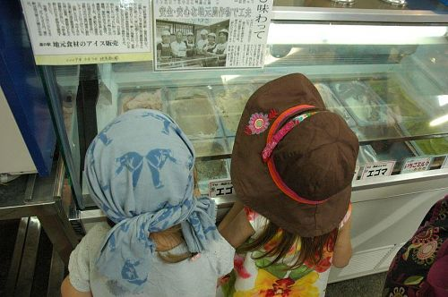 The ice cream is made in Kamiyama, and many of the flavors incorporate local seasonal ingredients