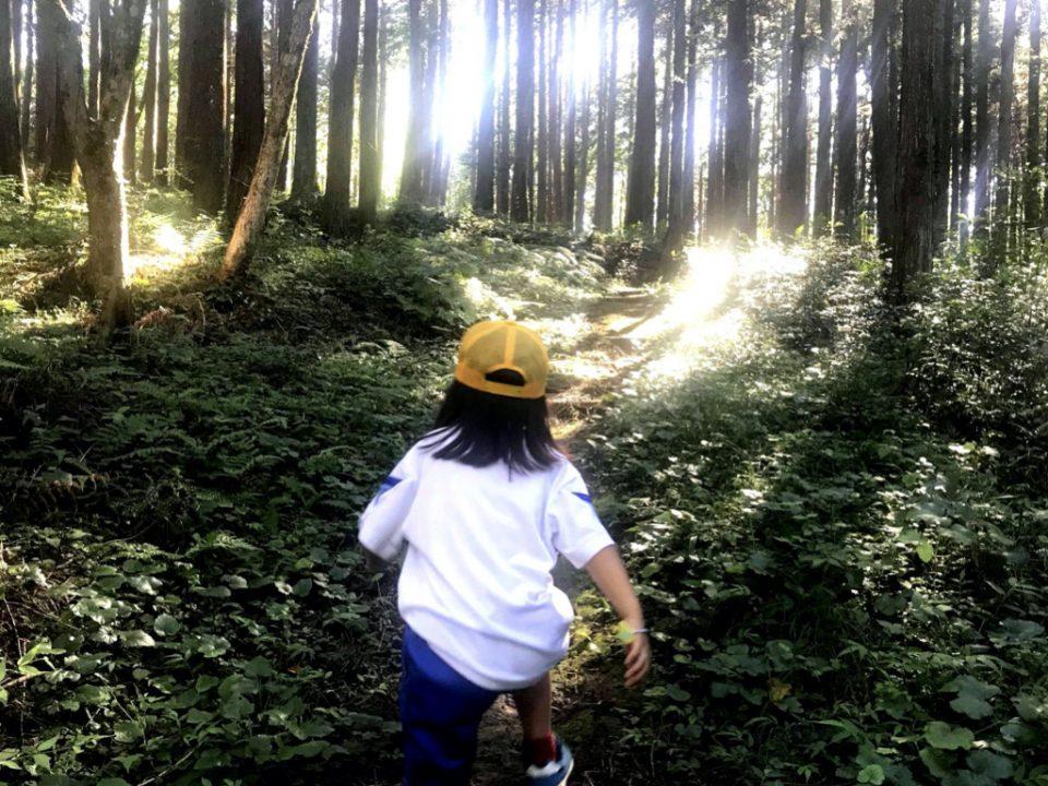 Mikke Trail Club
