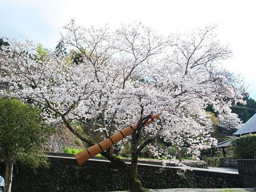 """ダニエル・ヴァン・デ・ヴェルデ """"木空"""" 2006"""