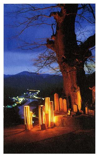 録澤 壽雄 Toshio Rokusawa 2000