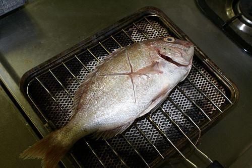 鳴門鯛を使った鯛飯の下準備