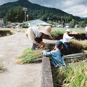 農と食文化